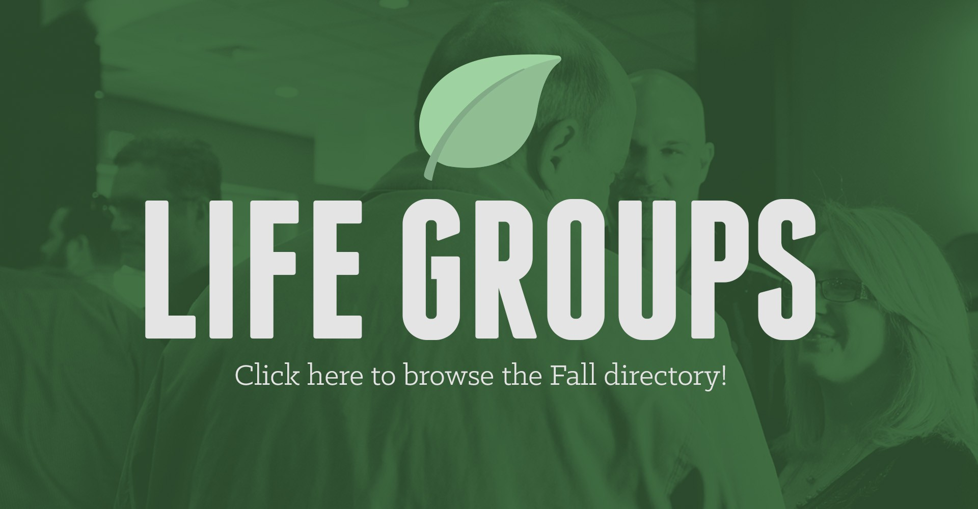 lifegroups-website1